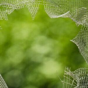 Plastic and mesh repair